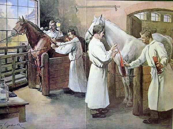 veteriner-hekim-tarihi